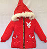 Куртка детская утепленная для девочки оптом на 3-6 лет