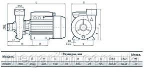 Насос центробежный SPRUT 2DK-20, фото 2