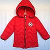 Куртка детская утепленная оптом на 2-5 лет