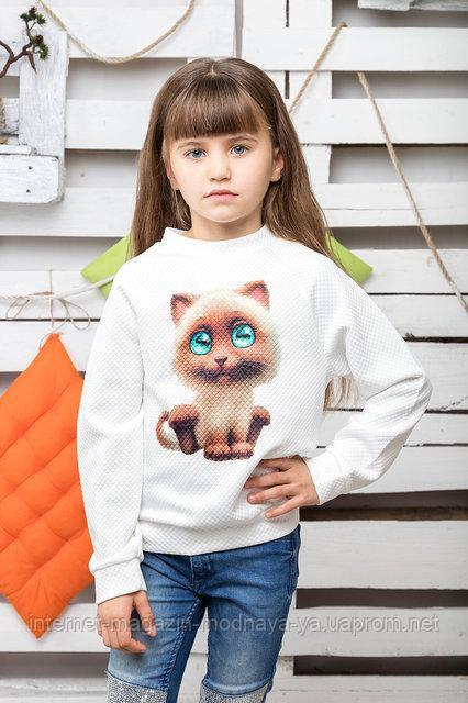 """Свитшот детский """"Кошка"""" р. 116-146 молоко"""