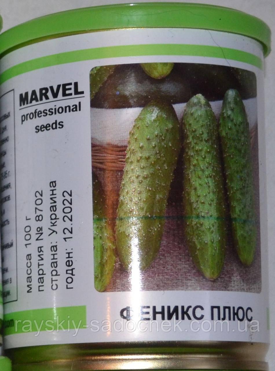 Семена среднереннего  огурца сорт  Феники плюс в банке 100г.  MARVEL