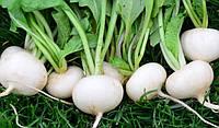 Семена Репа Сноуболл - 200 сем  Агроцех Вершки и корешки