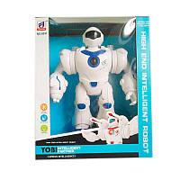 Робот 6031 (36) в коробке