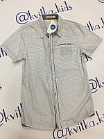 Рубашка на мальчика Размеры 134-164 см