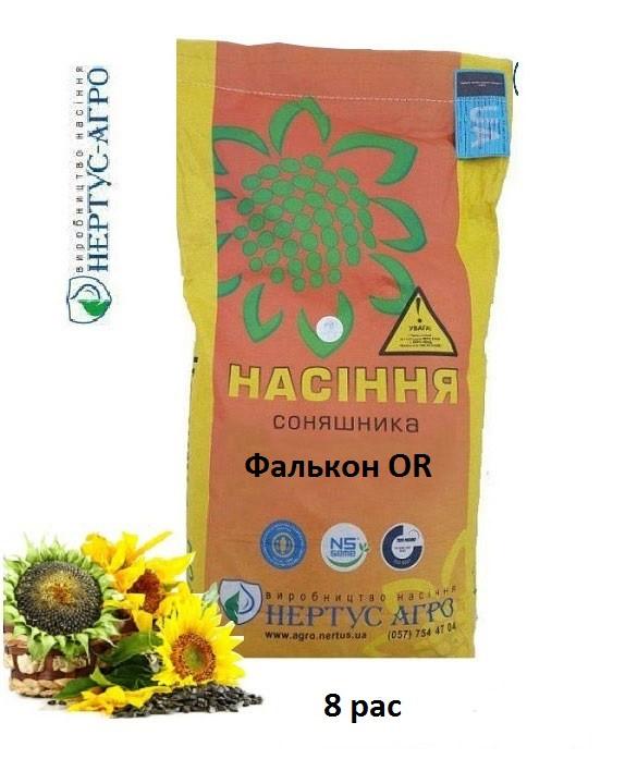 Семена подсолнуха Фалкон OR (8 рас) /Нертус/ Насіння соняшнику Фалкон OR (8 рас)