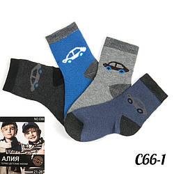 Носки детские мальчиковые махровые Алия C66-1
