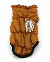 Курточка для собаки -S, фото 1