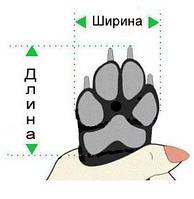Як визначити розмір взуття для собак