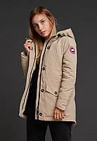 Короткая стильная парка куртка канадагус бежевого цвета гусиный пух очень теплая S