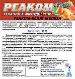 Реаком - Хелат - ЖЕЛЕЗА (тара 5л. 10л. 20л.), фото 2