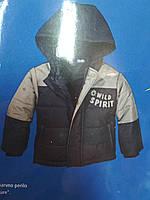 Детская куртка Lupilu для мальчика 86-92