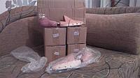 Клиент 14.01 заказывал 5 пар кедровых колодок.Сегодня(19.01) высылаем в Киев.....кедр...жаль,что через фото нельзя передать запах:)