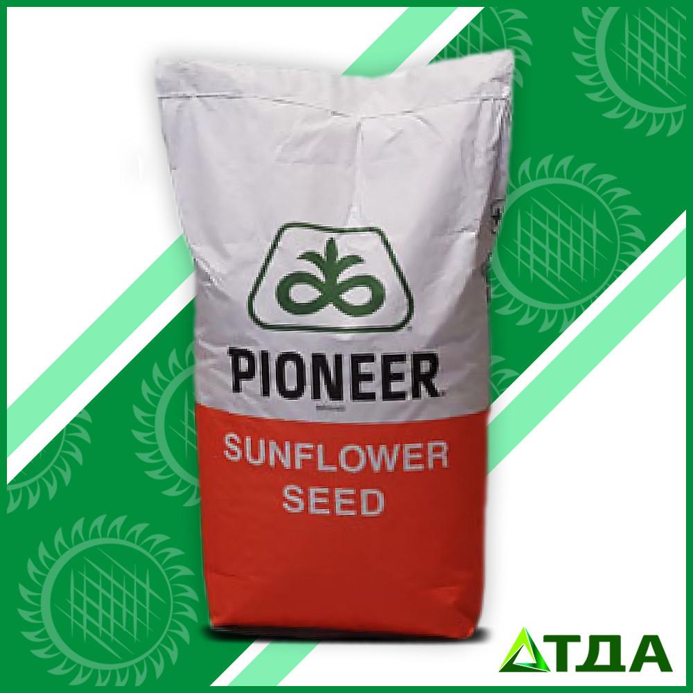 Семена гибрида подсолнечника P64HН106 Круизер 350 FS  высокоолеиновый