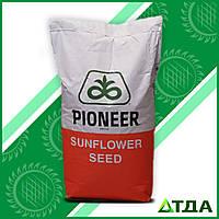 Семена гибрида подсолнечника P64HE118  высокоолеиновый