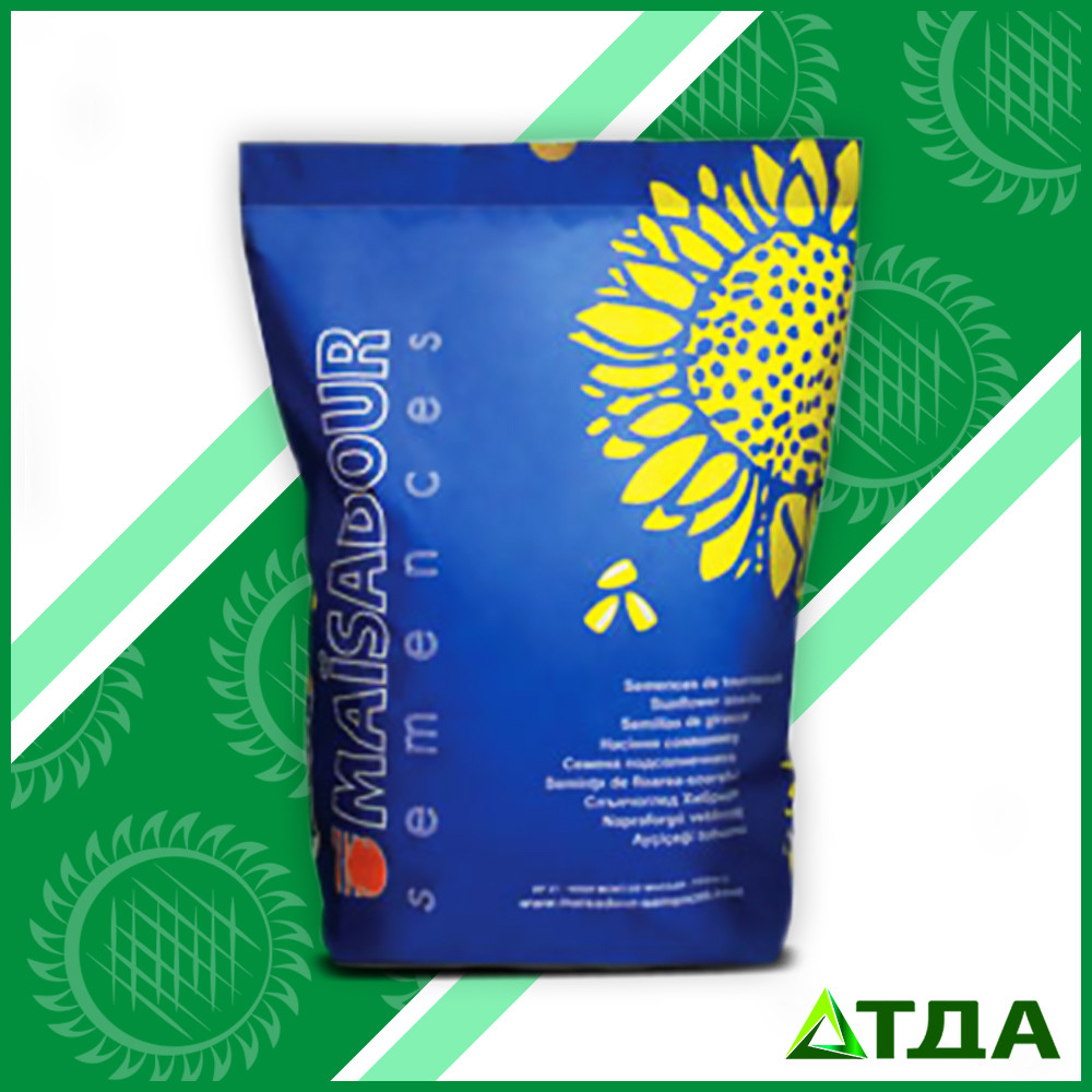 Семена подсолнечника Mas 86.OL/Мас 86.ОЛ