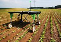 Точне землеробство може позбавити світ від генно-модифікованої їжі