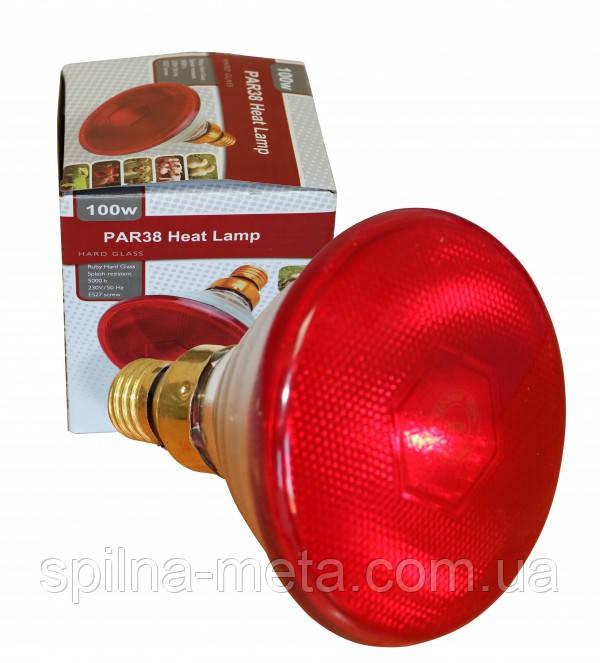 Лампа для обогрева инфракрасная PAR38 175W