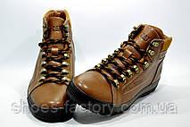 Зимние ботинки в стиле Cat, на меху (Caterpillar), фото 2
