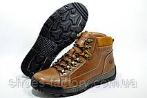 Зимние ботинки в стиле Cat, на меху (Caterpillar), фото 3