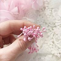 Тычинки нежно-розовые, пучок
