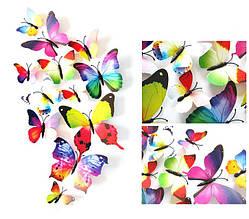 Объемные 3D бабочки на стену (обои) для декора (разноцветные Радуга)