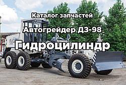 Каталог запасных частей к автогрейдеру ДЗ-98   Гидроцилиндр
