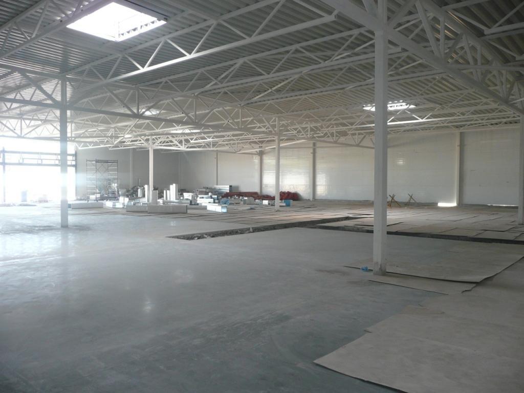 Проектирование металлических конструкций здания