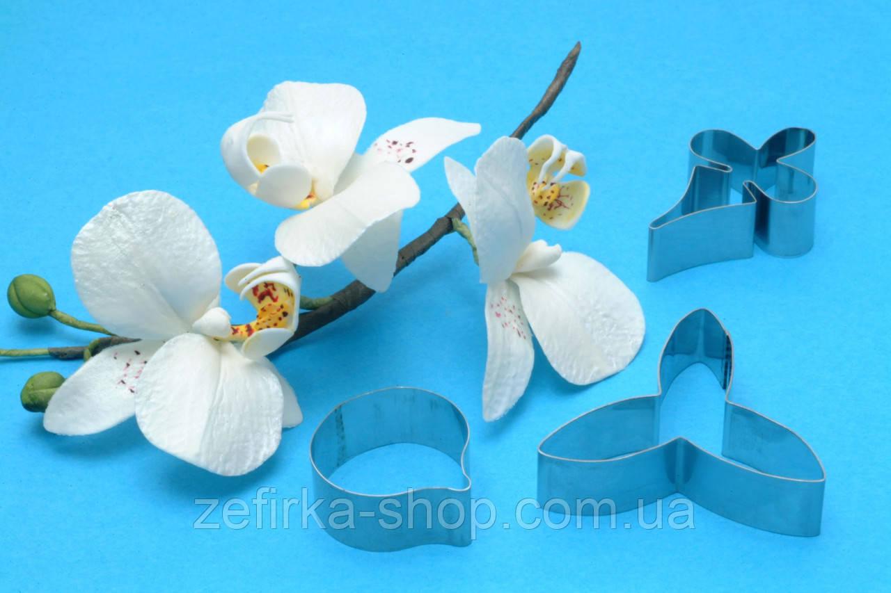 Набор вырубок Орхидея