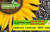 Новинка НСХ  7634( ЕВРОЛАЙТИНГ )