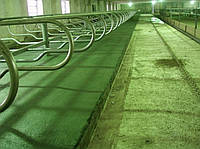 Гумове покриття для конюшень, для приміщень де утримуються тварини