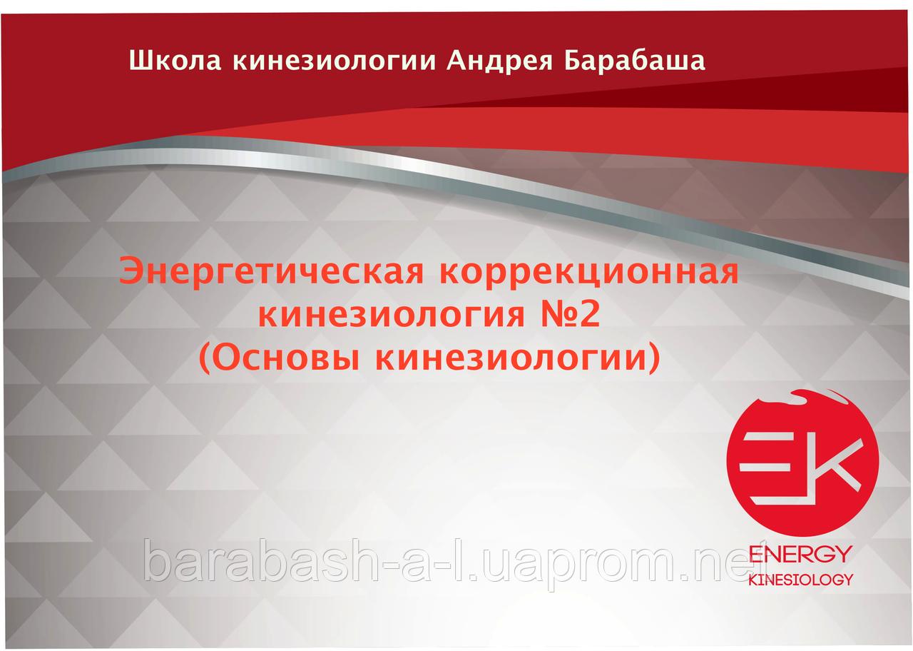 Энергетическая коррекционная кинезиология. №2 (Основы кинезиологии)