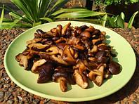 Рецепты приготовления блюд с грибами шиитаке