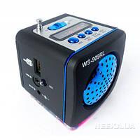 Радиоприемник колонка WSTER WS-909RL