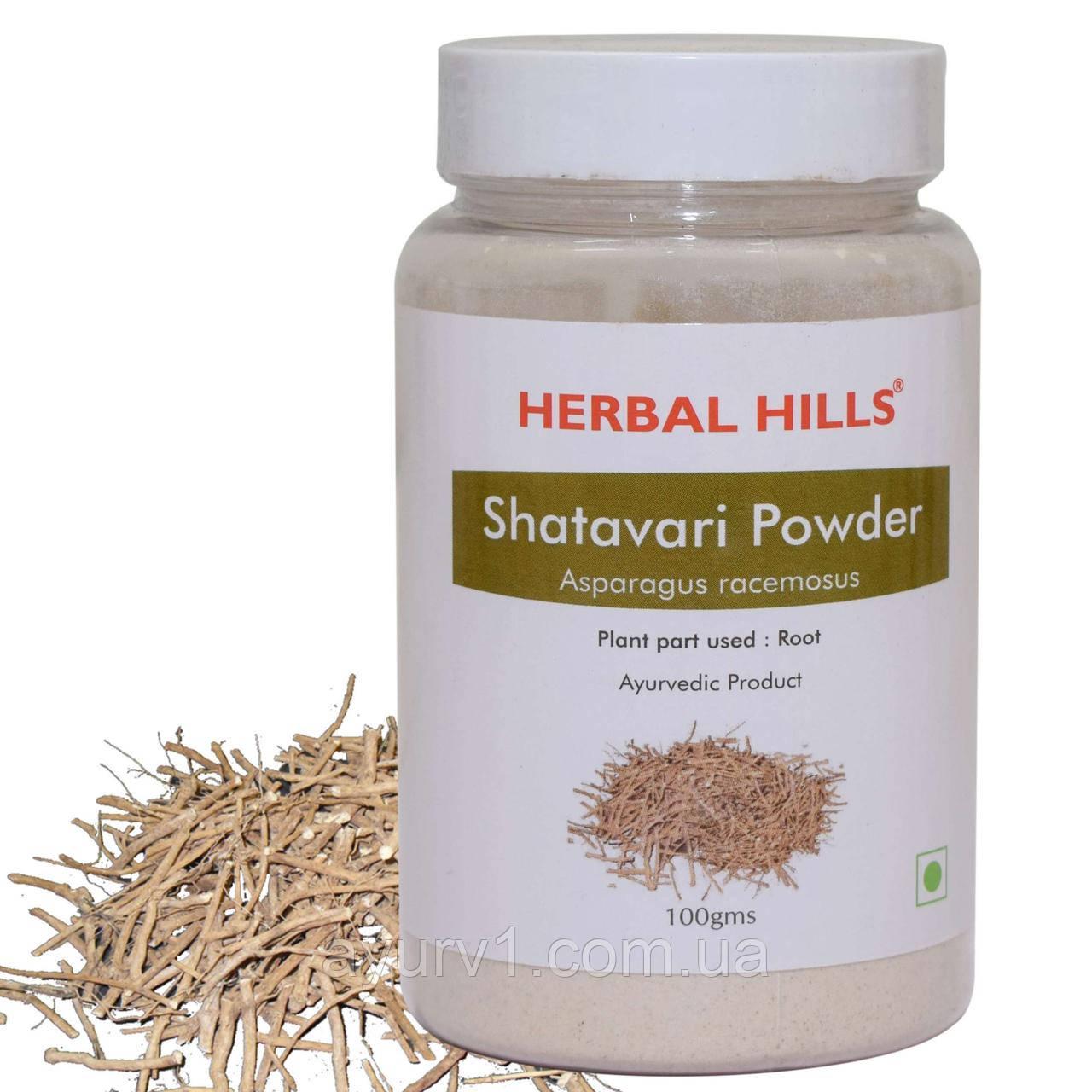 Шатавари в порошке/ Shatavari Powder / 100 г