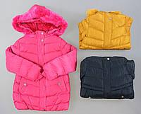 Курточка на хутряній підкладці для дівчаток Nature оптом ,2/3-8/9 років., фото 1