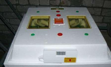 Функции терморегуляторов