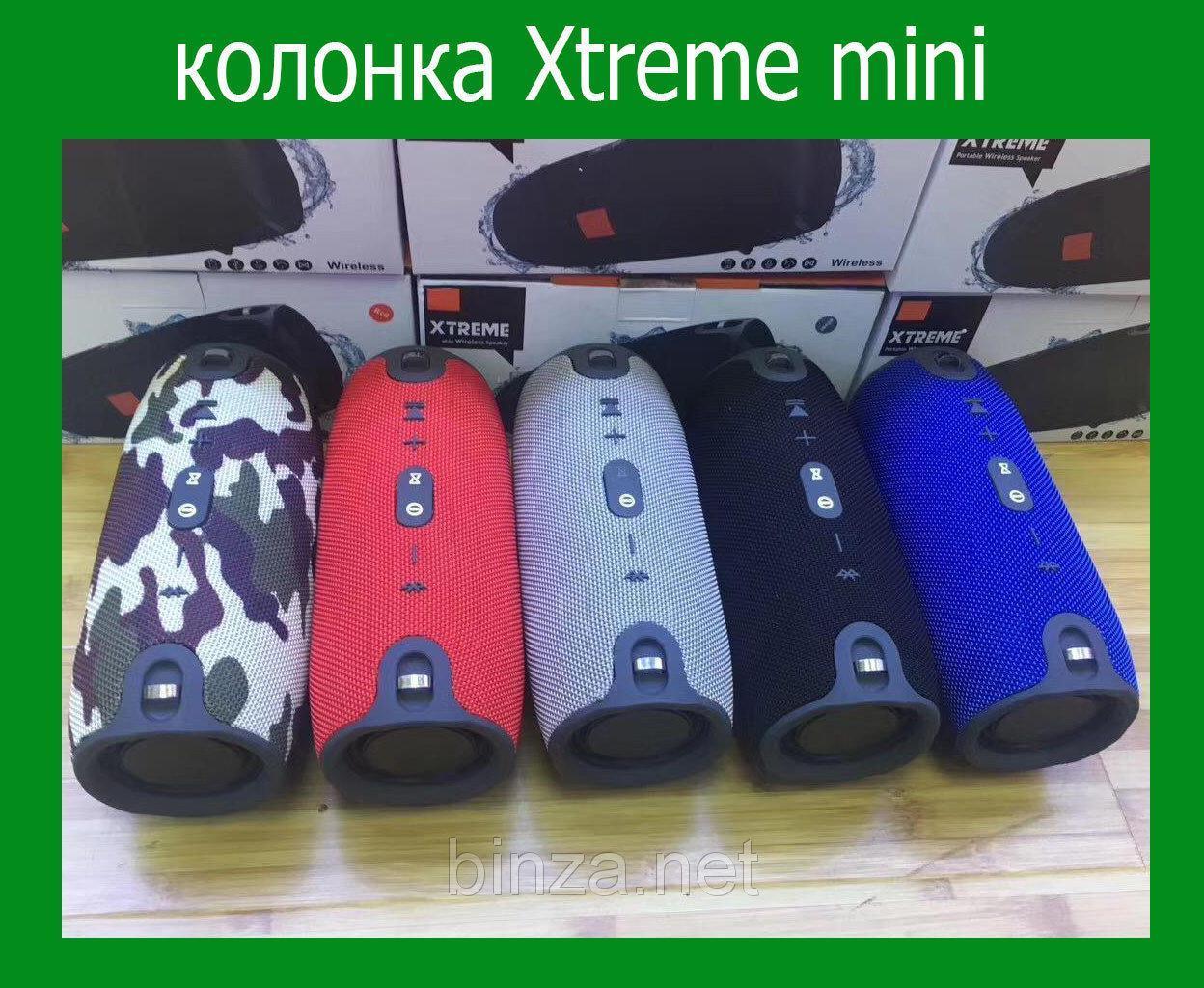 Портативная колонка Xtreme mini