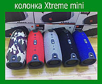 Портативная колонка Xtreme mini, фото 1
