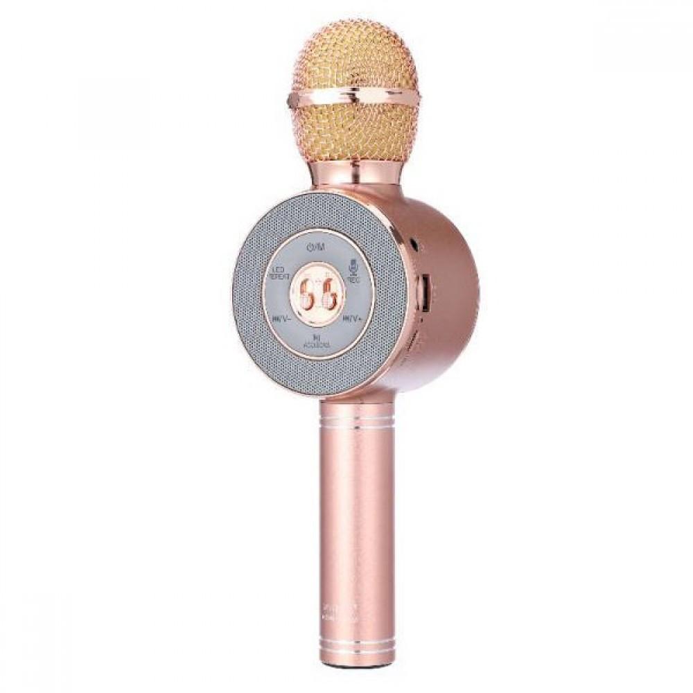 Микрофон караоке Wster WS-668