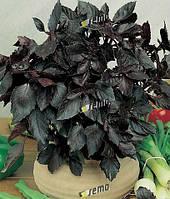 Базилик фиолетовый Dark Purple 10 грамм Semo