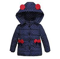 Курточка детская весенне осенняя