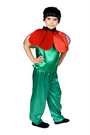 """Детский карнавальный костюм """"Мак"""" для мальчика, фото 2"""