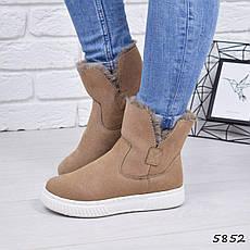 """Ботинки, ботильоны бежевые ЗИМА """"Sally"""" эко замша, повседневная, зимняя, теплая, женская обувь, фото 2"""