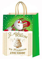 Новогодний пакет 16*16 микс 1 (10шт)