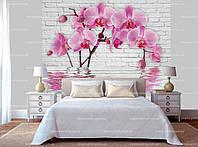 """3Д Фотообои с цветами """"Розовая орхидея в воде"""""""