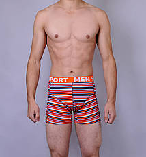 Чоловічі боксери Altedo (вішалка), фото 3