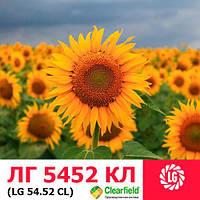Семена подсолнечника ЛГ5452 ХО КЛ