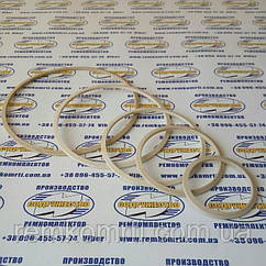 Кольцо защитное манжеты штока 40*50 КЗМШ (50 х 40-3.3) полиамидное