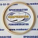 Кольцо защитное манжеты штока 17.8603.406 (180 х 170-3.3) полиамидное, фото 2