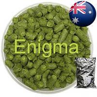 Хмель Энигма,(Enigma) α-15,9%